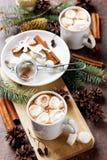 Filiżanka gorący kakao lub czekolada z marshmallows na drewnianym tle obraz stock