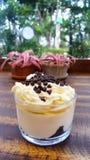 Filiżanka greccy jogurtów parfaits z czekoladowego układu scalonego i bata crea obraz royalty free