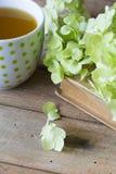 Filiżanka herbaciana i stara książka Zdjęcia Stock
