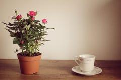Filiżanka herbaciane i herbaciane róże Fotografia Royalty Free