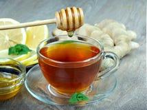 Filiżanka herbata, cytryna, imbir i mennica, Zakończenie Witaminy herbata zimno grypa lekarstwo zdjęcie royalty free