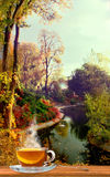 filiżanka herbata na natura krajobrazu tle zdjęcie stock