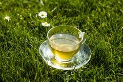 Filiżanka herbata w trawie na słonecznym dniu Fotografia Stock