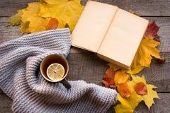 Filiżanka herbata, wygodny trykotowy szalik, jesień liście, otwiera książkę i bani na drewnianej desce życie ciągle jesieni Miesz Zdjęcie Royalty Free