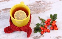 Filiżanka herbata z cytryną zawijał woolen szalika, rozgrzewkowy napój dla grypy, jesieni dekoracja Obrazy Stock