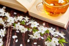 Filiżanka herbata z książką fotografia royalty free