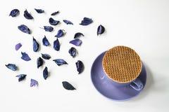 Filiżanka herbata z tradycyjnym holenderskim syropu ciastkiem, stroopwafel, na bielu stole z purpurami, suszy liście zdjęcia stock