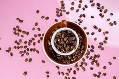 Fili?anka i kawowe fasole na koloru tle zdjęcia royalty free