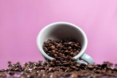 Fili?anka i kawowe fasole na koloru tle zdjęcia stock
