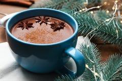 Filiżanka kakao z badian zdjęcie stock