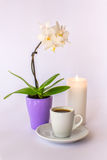 Filiżanka kawy, mała biała orchidea i płonąca świeczka, fotografia stock