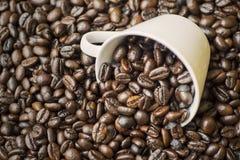 Filiżanka na rozsypisko kawowych fasolach fotografia stock