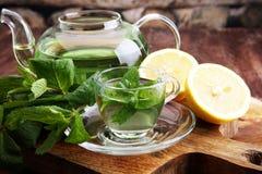 Filiżanka nowa herbata i liście mennica na stole Obrazy Stock