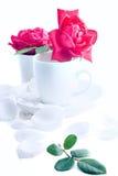 Filiżanka róże Obrazy Royalty Free