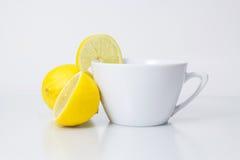 Filiżanka wysuszona mądra herbata Zdjęcie Royalty Free