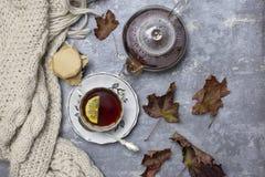 Filiżanka z czarną herbatą, cytryna, spodeczek, łyżka, galareta w słoju, liście klonowi i trykotowy szalik, blisko, szary tło zdjęcia royalty free