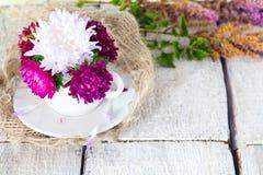 Filiżanka z kwiatu asteru płatkami na białym drewnianym tle Minimalny pojęcie Mieszkanie nieatutowy obraz stock