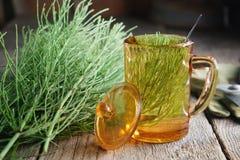 Filiżanka zdrowa herbata i wiązka horsetail leczniczy ziele na woodeCup zdrowa herbata, infuzja lub wiązka horsetail ziele Fotografia Stock