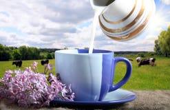 filiżanki błękitny mleko Zdjęcie Stock