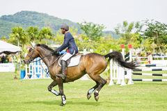 filiżanki equestrian skokowy najważniejszy przedstawienie Fotografia Stock