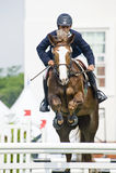 filiżanki equestrian skokowy najważniejszy przedstawienie Obrazy Royalty Free
