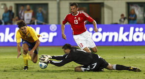 filiżanki Fifa Hungary określnik Sweden vs świat Obraz Royalty Free