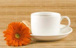 filiżanki herbata Fotografia Royalty Free