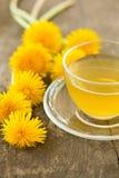 filiżanki herbata szklana ziołowa Fotografia Stock