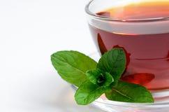 Filiżanki herbata z mennicą Zdjęcie Royalty Free