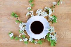 Filiżanki kawy i wiosny drzewny okwitnięcie na drewnianym tle kosmos kopii Odgórny widok Obrazy Stock
