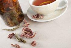 Filiżanki o ziołowa herbata Obrazy Royalty Free