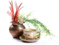 filiżanki ziele naturalna herbata Zdjęcie Stock