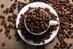 Filiżanek kaw fasole Zdjęcia Royalty Free