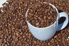 Filiżanek kaw fasole Obrazy Stock