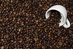 Filiżanka biel na kawowych fasolach Fotografia Royalty Free