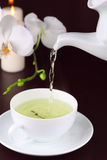 filiżanka biel zielony storczykowy herbaciany Fotografia Royalty Free
