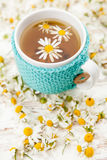 Filiżanka chamomile herbata Zdjęcie Stock