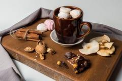 Fili?anka gor?ca czekolada z marshmallows, cynamon, tangerine owoc, pomara?czowe candied owoc zdjęcie stock