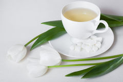 Filiżanka herbata i biel Tulipanowi kwiaty Zdjęcie Royalty Free