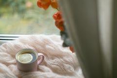 Filiżanka herbata na okno Obraz Stock