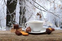 Filiżanka herbata na tle zima krajobraz Obraz Stock