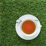Filiżanka herbata na trawy tle Fotografia Royalty Free