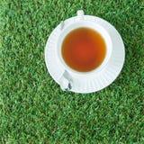 Filiżanka herbata na zielonych trawach od odgórnego widoku Zdjęcie Stock
