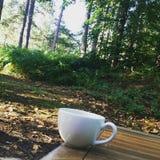 Filiżanka herbata podczas gdy w lesie Obrazy Stock