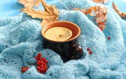 Filiżanka herbata w jesieni Zdjęcia Royalty Free