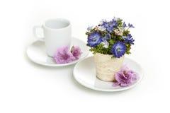 Filiżanka i kwiaty w spodeczkach Zdjęcie Royalty Free