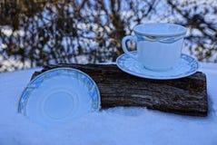 Filiżanka i talerz na drzewie w snowdrift Zdjęcia Royalty Free