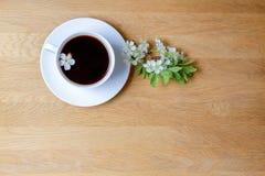 Filiżanka kawy z wiosny drzewem kwitnie na drewnianym tle kosmos kopii Odgórny widok Fotografia Stock