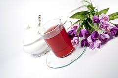 filiżanka kwitnie szklanej czerwonej herbaty Obraz Royalty Free