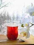 Filiżanka lipowa herbata i orchidea Zdjęcia Royalty Free